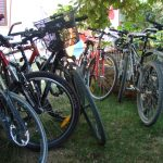 Apartmens Marta Novigrad - bike tours