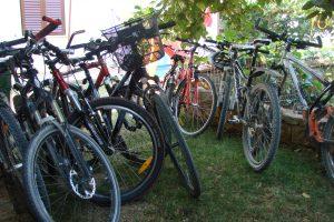 Alloggi Mara Novigrad-Cittanova bici